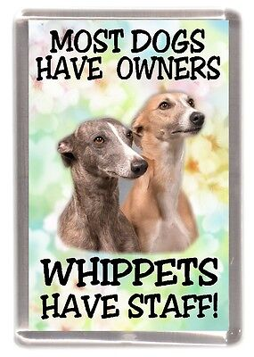 "Whippet Dog Fridge Magnet ""Whippets Have Staff!"" by Starprint"