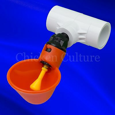 4 Count Poultry Drinking Cups- Chicken Hen Coop Water Drinker + Fitting USA!