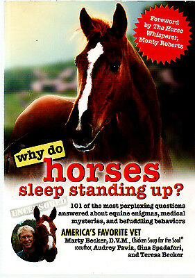 HORSE BOOK Why Do Horses Sleep Standing Up? - Marty Becker (Paperback)