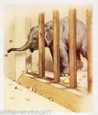 CECIL ALDIN Baby ELEPHANT Peanut  Zoo Animal VINTAGE  Print 1933  MATTED Picture