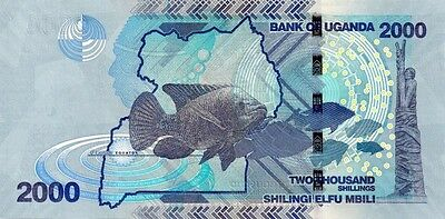 UGANDA  (2010) 2000 SHILLINGS  BANK NOTE in a Protective Sleeve