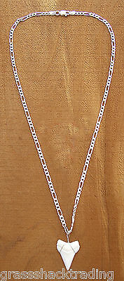 925 Sterling Silver Necklace with Real Shark Tooth-Sharks Teeth