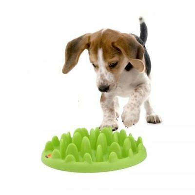 Small Dog Puppy Mini Green Interactive Slow Feed Feeder Bowl Non Slip