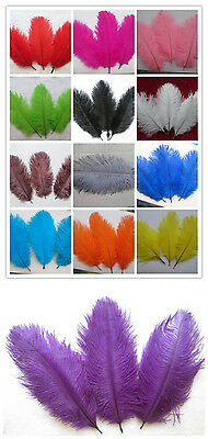 Wholesale beautiful ostrich feather 15-20 cm / 6 to 8 inches free shipping