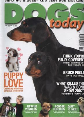 DOGS TODAY MAGAZINE - July 2007