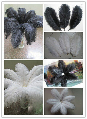 Wholesale Beautiful ostrich feathers black / white long 6-24 inches 15-60 cm