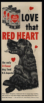 1952 Cute COCKER SPANIEL Dog - Puppy Loves RED HEART Dog Food - Art - VINTAGE AD