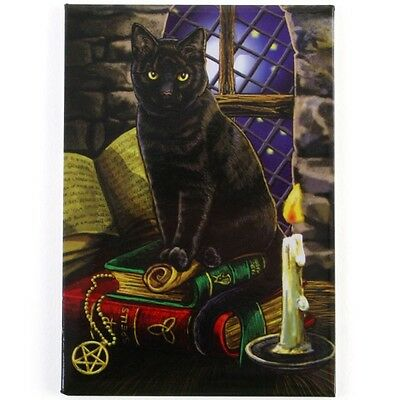 Spell Cat. Fridge Magnet. Designed by Lisa Parker. Fairy. Fantasy.