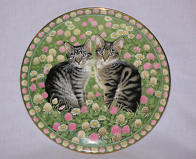 Aynsley China Meet My Kittens Cat Plate by Lesley Anne Ivory Muppet & Emu - MAY