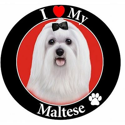 I Love My Maltese Car Magnet