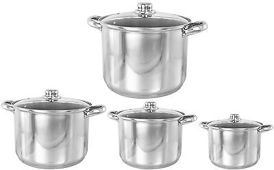 Buckingham Stainless Steel Induction Stock Pot Glass Lid 9,11,13.5,16,19 L