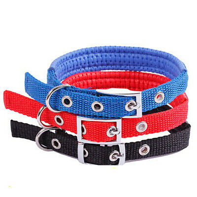 Wholesale Pet Classic Solid Reflective Padded Adjustable Sturdy Nylon Dog Collar