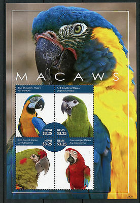 Nevis 2014 MNH Macaws 4v M/S Birds Parrots Macaw Stamps