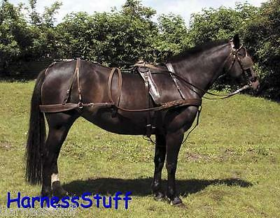 Windsor Oily Carriage Driving Harness - Economy Great Value for Money