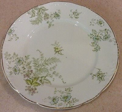 GRINDLEY DINNER PLATE DAISY GREEN FLOWERS GOLD ACCENT ENGLAND SHABBY CHIC FLORAL