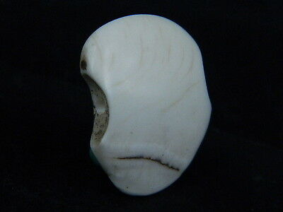 Ancient Roman Shell/Bone Pendant C.200 BC • CAD $31.50