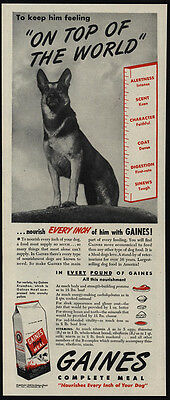 1946 Regal GERMAN SHEPHERD Dog Loves GAINES Dog Food VINTAGE AD