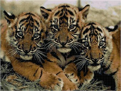 Cross Stitch Chart Pattern 3 Tiger Cubs Needlework Picture Design Craft