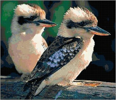 Cross Stitch Chart Pattern Kookaburra Pair Needlework Picture Design Craft