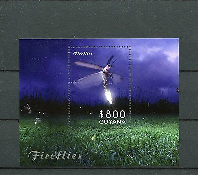 Guyana 2014 MNH Fireflies 1v S/S Insects Firefly