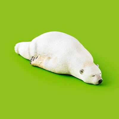 Takara Tomy Panda's ana Zoo Zoo Zoo Sleeping Animal Collection P2 Polar Bear