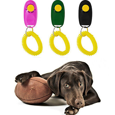 Hot Pet Dog Puppy Training Trainer Clicker Wrist Strap Guide Toy Randomly