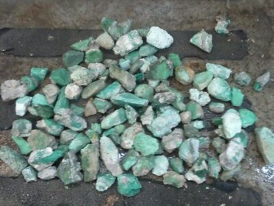 Over 3 pounds Variscite rough 1430 grams