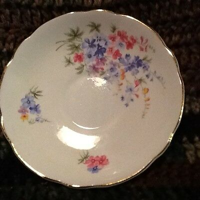 Vintage Floral Plate Regency Bone China Made In England