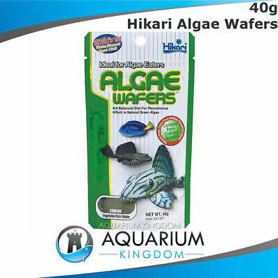 Hikari Algae Wafers 40g - Tropical Catfish & Plecos Sinking Wafer Disc Fish Food