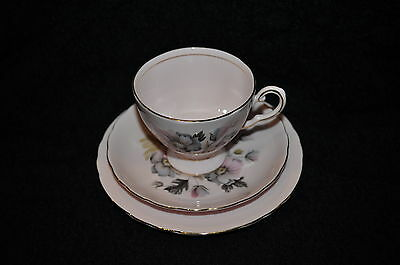 Tuscan Alderney  Antique  Collectible Cup & Saucer & Plate Rare Free Shipping