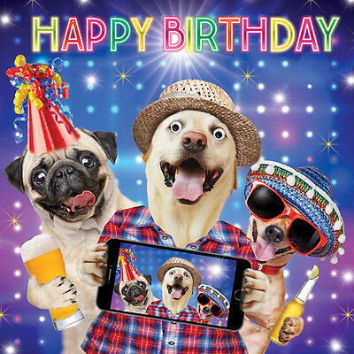 Pug Dog & Friends Birthday Selfie Funny Birthday Card 3D Goggly Moving Eyes