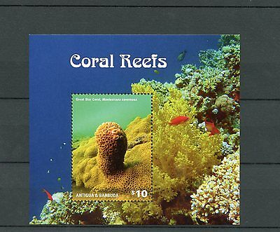 Antigua & Barbuda 2014 MNH Coral Reefs 1v S/S II Marine Great Star Coral Stamps