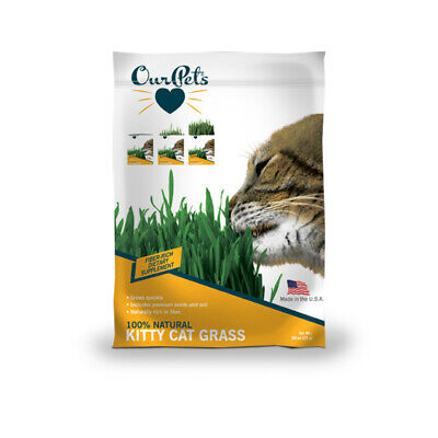 OurPet's - Growable Cat Treats - Kitty Cat Grass Kit - Free Shipping