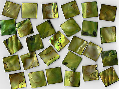 50g Lime Pearl Shell 2020 Square Mosaic Tile 20mmx20mmx2mm Cut Shell Border
