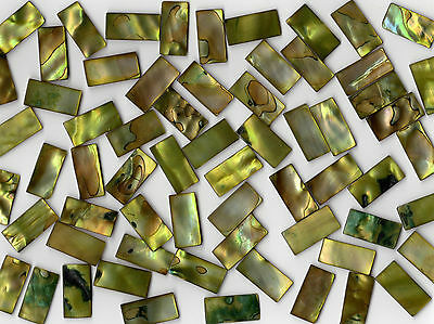 50g Lime Pearl Shell 1020 Rectangle Mosaic Tile 10mmx20mmx2mm Cut Shell Tile