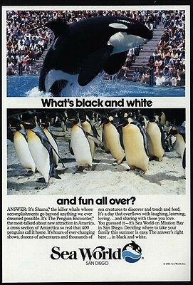 1984 SEA WORLD - Shamu - Killer Whale - Penguins - San Diego - VINTAGE AD
