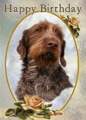 German Wirehaired Pointer Dog A6 Textured Birthday Card BDGRMNWRPOINT paws2print