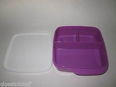 TUPPERWARE 2 Square Bento Snack Divided Containers Purple Green Toddler Kids New