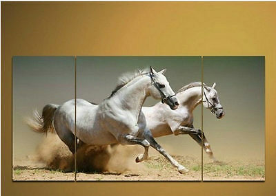 """Handicraft Modern Abstract Huge Canvas Art Oil Painting """"white horses""""  NO  FRME"""