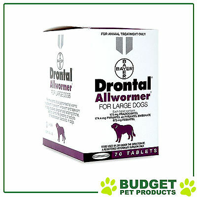 Drontal Allwormer For Dogs 35kg 70 Tablets