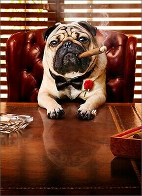 Mobster Dog Funny Pug Father's Day Card - Greeting Card by Avanti Press