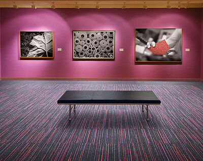 New Commercial Carpet Tiles, 50% Off, Purple And Red Stripe, $27.50 Per Sqr Mtr