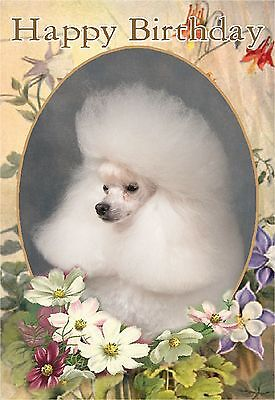 Japanese Spitz A6 Blank Card Design No 6  By Starprint