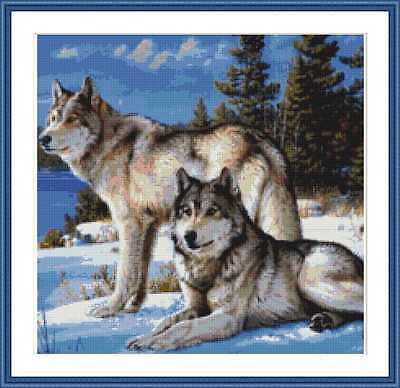 Cross-Stitch Embroidery Color Pattern with DMC codes - Beautiful Wolf Couple
