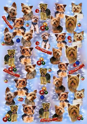 Yorkshire Terrier Christmas Wrapping Paper - Starprint