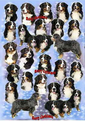 Bernese Mountain Dog Xmas Wrapping Paper By Starprint