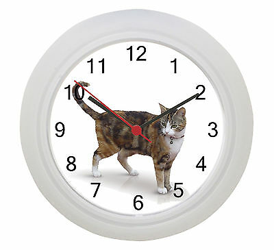 Cat Wall Clock ! Our Photo Or Put Your Own Cat on a Clock !