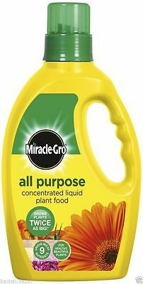 Miracle Gro All Purpose Concentrated Liquid Plant Food 1Litre