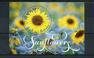 St Kitts 2015 MNH Sunflowers 1v S/S II Sun Flowers Nature Flora