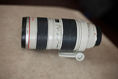 Canon EF 70-200mm f/2.8 L Zoom